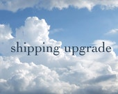 Shipping Upgrade - EMS - International Express Mail