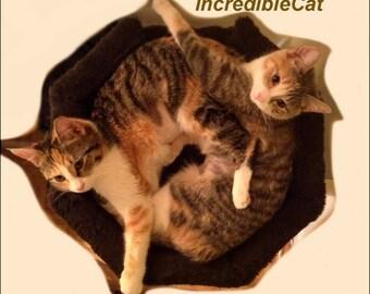 DESIGNER CAT TREE 2' High Dillon, Cat Lover Gift, Unique Cat Furniture, Custom Cat Trees, Luxury Cat Beds, Fancy Cat Trees, Cat Dillon 2F1B