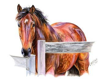 11x14 Thoroughbred Horse Art Watercolor Painting Print Gift for the Equine Lover