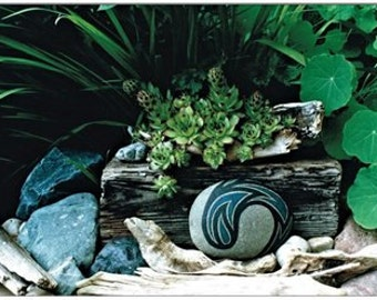 Cool Zen Art Greeting Cards Botanical Snail Mail Note Cards Garden Scene Blue Rocks Driftwood Green Plants Unique Art Photo Cards Gift Ideas