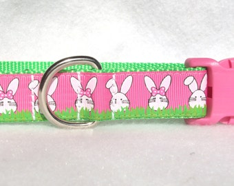 Easter Bunny Dog Collar, In M, L, XL