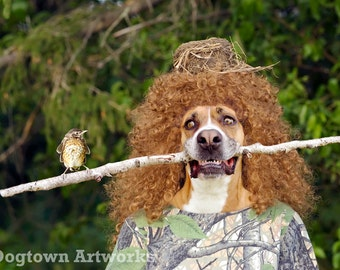 Surrogate Mother, large original photograph of Boxer dog wearing dress and holding stick with baby robin