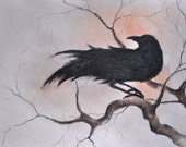 Original Charcoal Raven Drawing Crow Halloween Dark Gothic Art 12x9""
