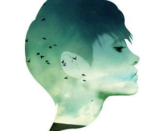 Birds in the Mist Facescape Wall Decal