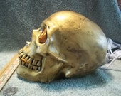 Awesome New Light Up Human Skull Antiqued Gold Metallic Finish Made of Ceramic  Skulls