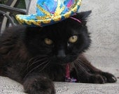 Customizeable Teohuacan Turquoise Sombrero for cat or dog
