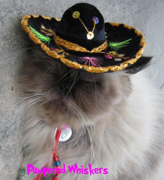 Sombrero for dog or cat - Customizeable Buckaroo Black