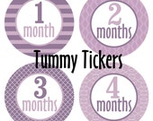 On Sale Monthly bodysuit Stickers...Set of 12 Girls...Purple Shades...Waterproof....Months 1-12 Baby Month Document Growth