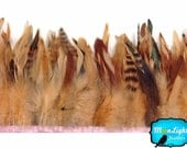 Feathers Fringe ,1 yard - Champagne Chinchilla Rooster Feathers Trim : 3150