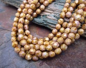 Golden Caramel Corn Faceted Firpolished 4mm Beads