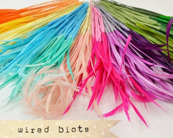 10 bundles - 25-30pcs - Goose Biots on Wire - could be curled - premium millinery supply, fishing supply, fly tying