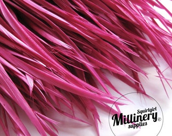 Cerise Pink Goose Biot Feather Fringe, 5 Inch Piece (30 or More Feathers) for Millinery and Craft