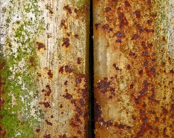 Schismata - Rusted Surface Fine Art Photograph - Gallery Quality Signed Limited Edition with Selectable Size and Mounting Options