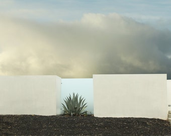 Desert Fence Architectural Landscape of a Cactus a Cloud and a Fence