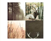 on Sale - Rustic Home Decor, Brown Green Gold Wall Art for a Man Cave- Nature Photography Set of 4 Prints