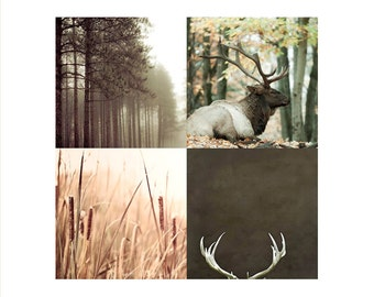 SALE, Rustic Wall Art, Brown, Green, Set of 4 Prints, Fall, Man Cave, Nature Photography, Art for Men