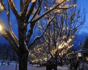 Snow village at dusk