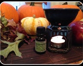 Room Scent Diffuser Set- Essential Oil- Wax Melts- Aromatherapy- Home and Living- Gifts Under 20- Everyday is Earth Day!