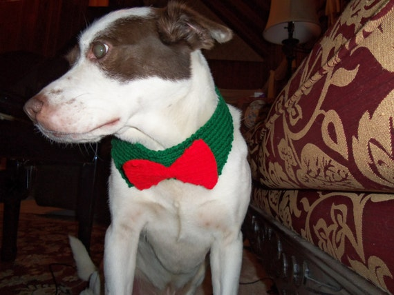 Knitting Pattern For Dogs Tuxedo : Hand Knitted Large Dog Collar tuxedo holiday by KnitsbyLE on Etsy