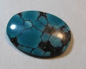 Spiderweb Turquoise cab ...     22 x 16 x 3 mm  ....         a3502