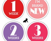 INSTANT DOWNLOAD - Printable Girl Monthly Baby Stickers - Set of 16 - One for Every Month AND Newborn Set - Photo Prop or Shower Gift