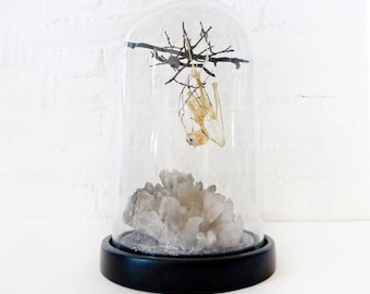 Real Bat Skeleton Hanging Over Smokey Quartz Cluster Stone in Glass Dome - Black Fangs & Ombre Bone Wings - Black Wood Coffin Gift Box OOAK