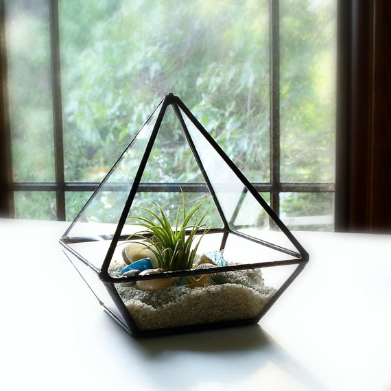 Glass Terrarium with Shells, Glass Geometric Planter, DIY