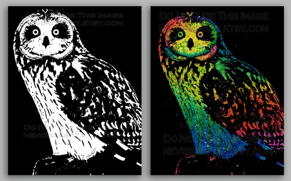 Animal Bird Art Owl Painting Signed Print - 5x7, 8x10, or apprx 11x14 Art Print - Black and White or Rainbow Owl