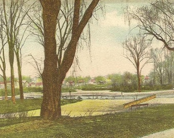 Along the Lake of Orange Park 1907 UDB Antique Postcard New Jersey