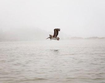 "Grey Ocean Wall Art, Nautical Decor, Pelican Photograph, Foggy Ocean, Grey Beach Decor, Minimalist Ocean ""Pelican In The Mist"""