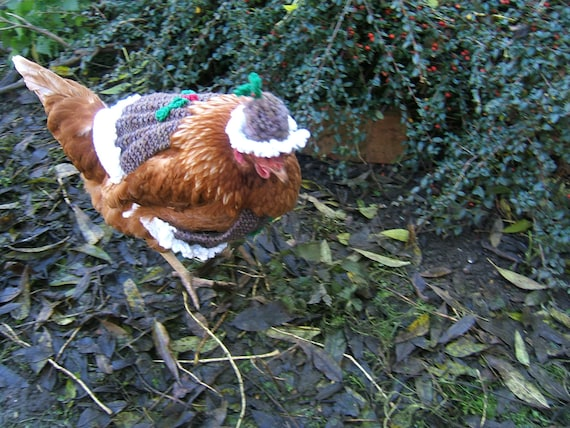 Items similar to Charity Knitting pattern Christmas Pudding Chicken Coat with...