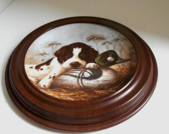 Collectible Springer Spaniel Limited 1st Issue Framed Plate