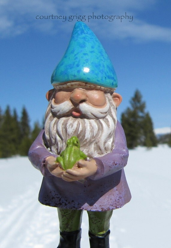 Items Similar To Snow Loving Gnomad And His Frog Friend