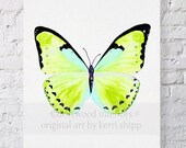 "Butterfly in Green 8x10 - ""Papillon Verte"" - Green Aqua Butterfly Print"