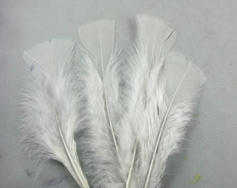 25 White Turkey Flats Plumage, loose feathers K1a craft feathers fly tying feathers plumes