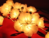 20 Bulbs Handmade Sweet White string lights for Patio,Wedding,Party and Decoration