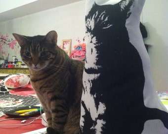Cute KATZ screen printed pillow and future icon