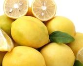 On Sale 25% Off Lemon Verbena Roll On Perfume Oil