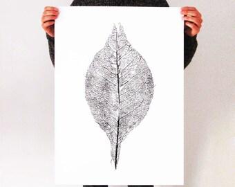 Leaf Screen-print  50 x 70 cm