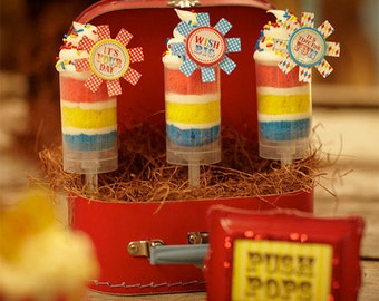 Push Up Pop Containers / Supplies / Cake Pops / Clear Push Pop Containers