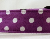 Dog Collar  - Dog, Martingale or Cat Collar - All Sizes -  Purple Polka Dots