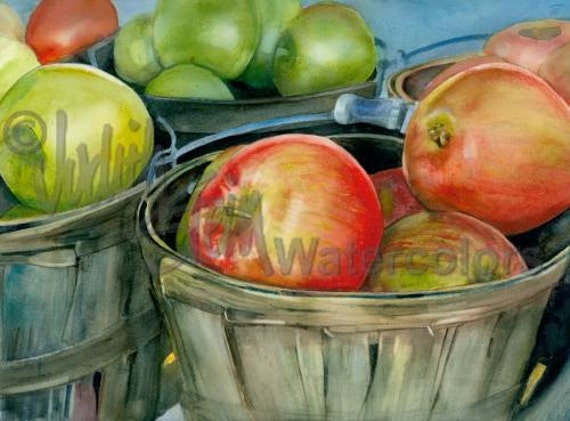 """Basket of McIntosh Apples at a Farmer's Market, Red & Green, Watercolor Painting Print, Wall Art, Home Decor, """"Scottish Apples"""" Judith Stein"""