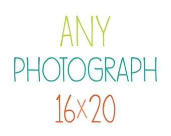 Any Photograph as a 16x20Print