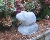 Guinea Pig Concrete Statue