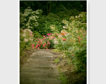 Rose Garden Print, Garden path, Landscape Photo, nature print, Country Photography, green,  garden path print, rose garden photo