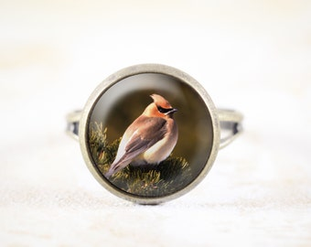 Cedar Waxwing Jewelry Ring - Bronze Jewellery, Songbird Ring