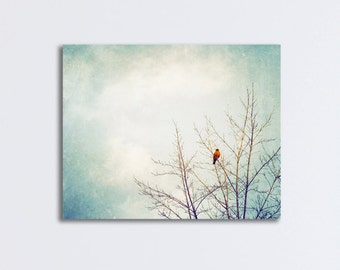"""Robin Bird Canvas Wrap - photography nature photo grey gray neutral tree large wall art light blue - 24x30, 16x20 - """"Searching for Spring"""""""