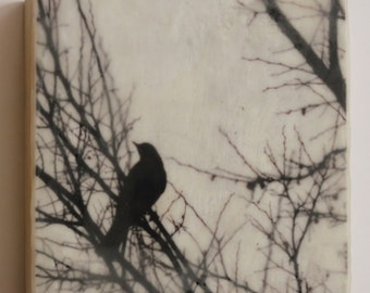Black Bird II - Original Photo-Encaustic on Wood