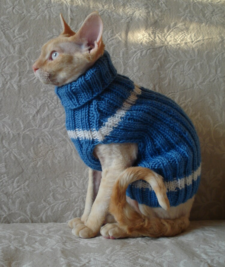 You searched for: cat knitted jumper! Etsy is the home to thousands of handmade, vintage, and one-of-a-kind products and gifts related to your search. No matter what you're looking for or where you are in the world, our global marketplace of sellers can help you find unique and affordable options. Let's get started!