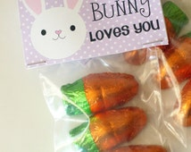 Easter Some bunny Treats   Favor tags Bag - Goody Bag Set- Digital Set- Instant Download